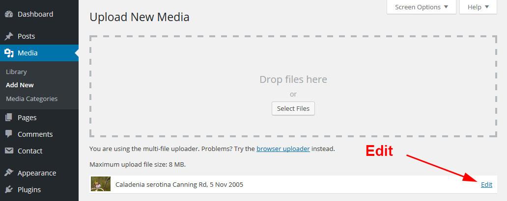Upload New Media